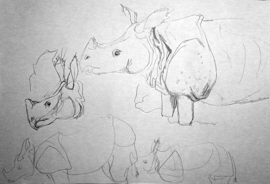 Nashorn steht