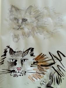 Katze_Test