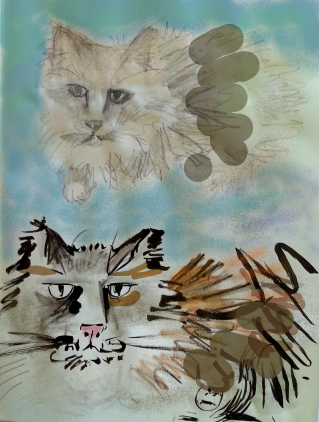 Katze_Test1